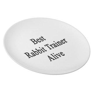 Best Rabbit Trainer Alive Dinner Plate