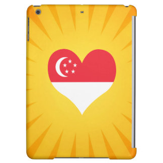 Best Selling Cute Singapore iPad Air Cases