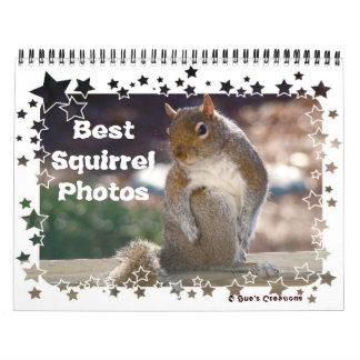 Best Squirrel Photos Calendars