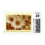 """""""Best Wishes/Congratulations"""" Sepia Daisies 1 Postage"""