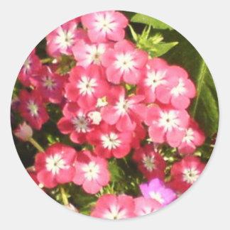 Best Wishes - Floral Presentation Classic Round Sticker