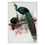 Best wishes, friends, family, Peacock Greeting Card