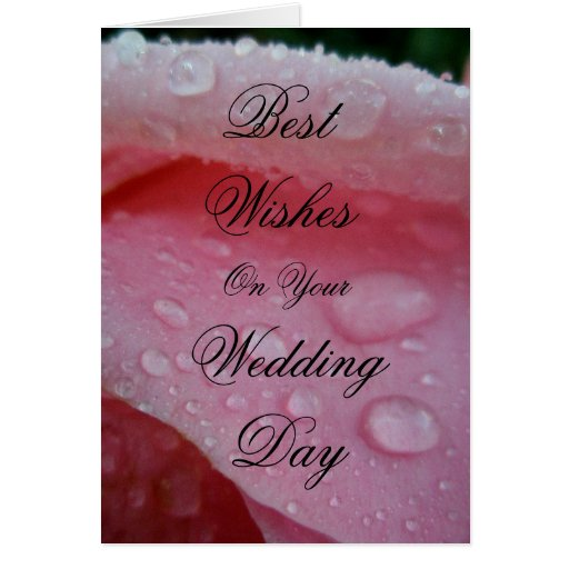 Wedding Day Wishes: Best Wishes On Your Wedding Day Greeting Card