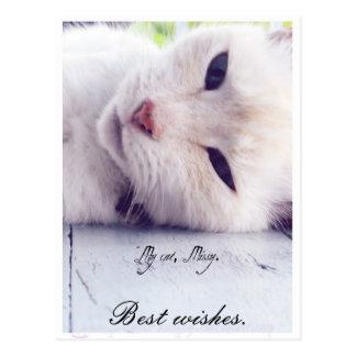 Best wishes. postcard