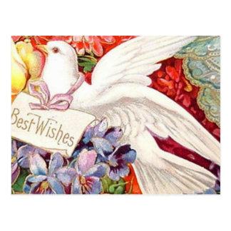 Best Wishes Victorian Dove Wedding Birthday Postcard
