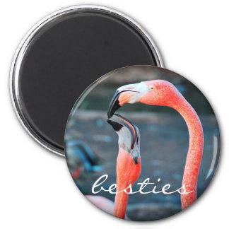 """Besties"" quote orange pink flamingos photo magnet"