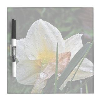 Bestselling Daisy Themed Dry-Erase Whiteboard