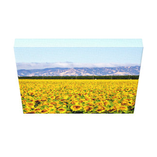 Bestselling Field Themed Canvas Print