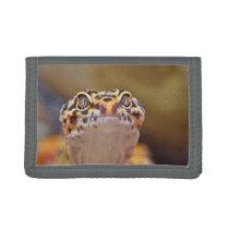 Bestselling Gecko Themed Tri-fold Wallet