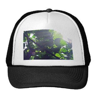 Bestselling Green Themed Trucker Hat