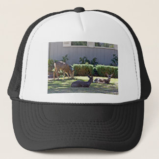 Bestselling Nature Themed Trucker Hat