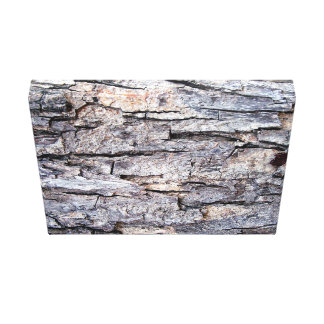 Bestselling Rough Themed Canvas Print