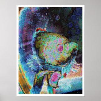 Beta fish 1 poster