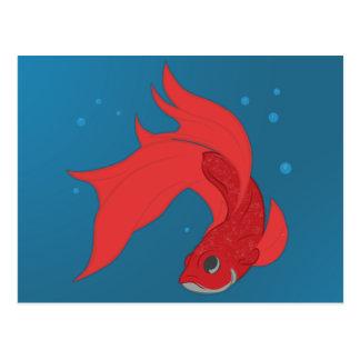 Beta Fish Postcard
