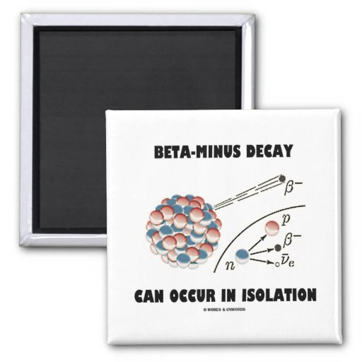 Beta-Minus Decay Can Occur In Isolation (Physics) 2 Inch Square Magnet