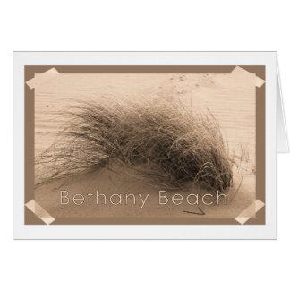 Bethany Grass Card