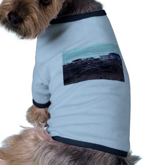 Bethel homes and cemetery doggie shirt