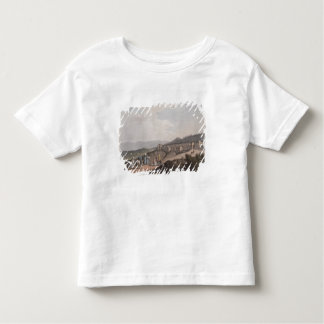 Bethlehem in Palestine, View of the Principal Part Tee Shirt
