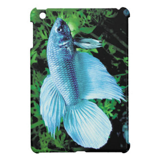 betta and cobalt blue cover for the iPad mini