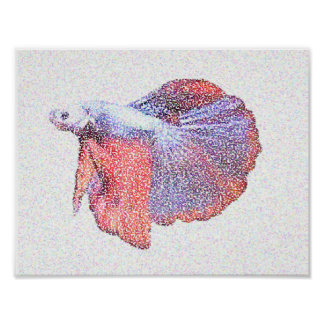 Betta Fighting Fish Poster Design