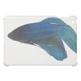 Betta Fish or Male Blue Siamese Fighting Fish iPad Mini Cases