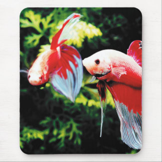 Betta Mouse Pad
