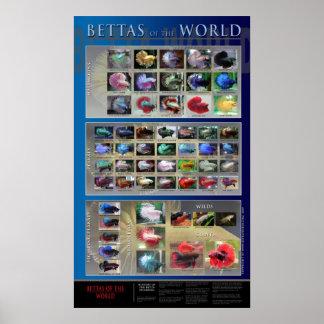 Betta Poster