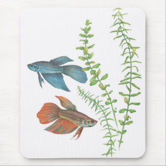 Betta splendens and Rotala indica White Mouse Pad