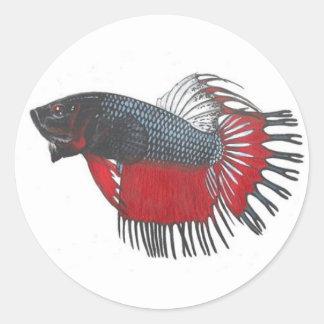 Betta splendens Siamese Fighting Fish Sticker