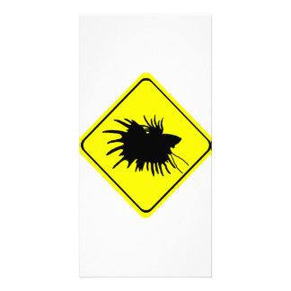 Betta Warning Sign Love Siamese Fighting Fish Card