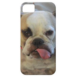 Bettie Bulldog Tongue iPhone case. iPhone SE/5/5s Case