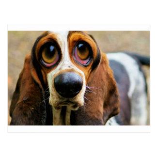 Betty Bloodhound Postcard
