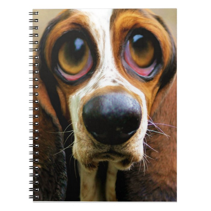 Betty Bloodhound Spiral Notebook
