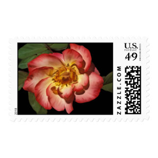 Betty Boop Rose Postage