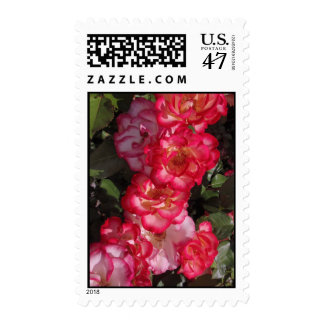 Betty Boop Roses Postage