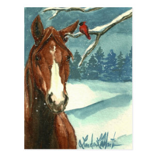 Between Friends Wild Horse Post Card