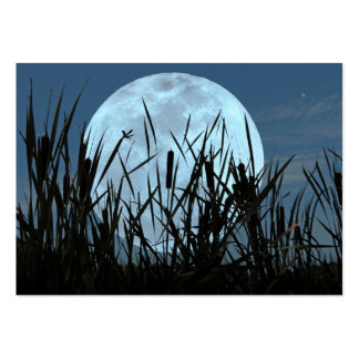 Between Moon and Marsh ATC Photo Card Large Business Cards (Pack Of 100)