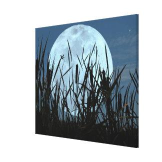 Between Moon and Marsh Canvas Art Print Canvas Print
