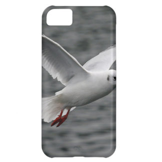 beutiful high flying seagull over alantic ocean iPhone 5C cover