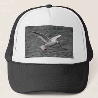 beutiful high flying seagull over alantic ocean trucker hat