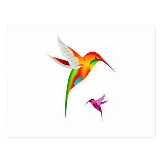 Beutiful Hummingbirds, Colibri Postcard