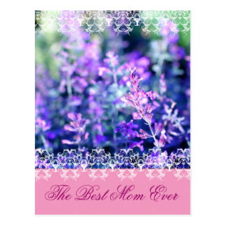 Beutiful lavender Mother's Day gift Postcard