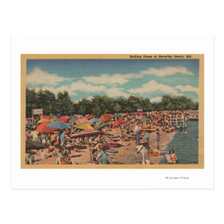Beverley Beach, MD - Sunbathing Scene Postcard