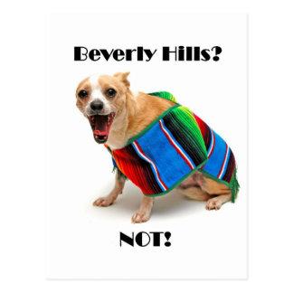 Beverly Hills? NOT! Postcard