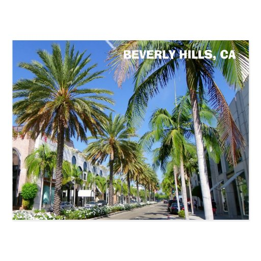Beverly Hills, Rodeo Dr. Postcard!