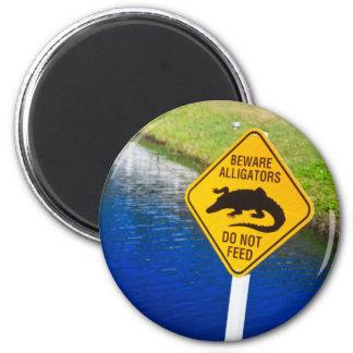 Beware Alligators Do Not Feed Magnet