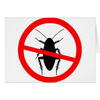Beware Cockroaches Card