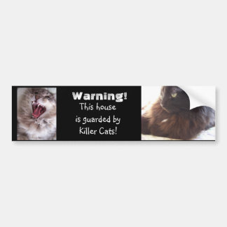 Beware-Killer Cats Bumper Sticker