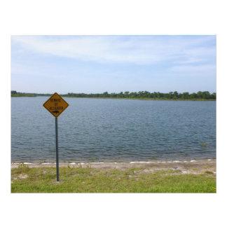 Beware of Alligator Sign by pond Custom Flyer