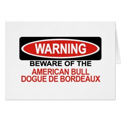 dogue de bordeaux cross pitbull. Got a American Bull Dogue De